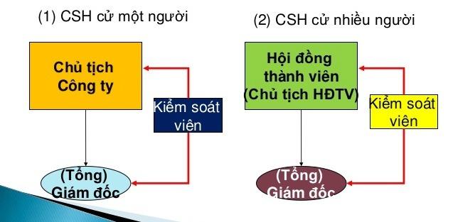 Cơ cấu tổ chức loại hình công ty TNHH một thành viên